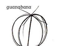 guanabana-audio-wp